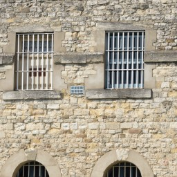 Behind the Curve: Prison and Covid-19